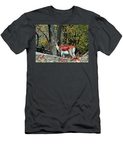 A Deer Look Men's T-Shirt (Slim Fit) by Lydia Holly