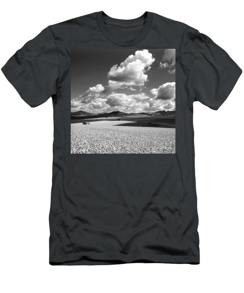 A Field Of Wheat. Limagne. Auvergne. France Men's T-Shirt (Athletic Fit)