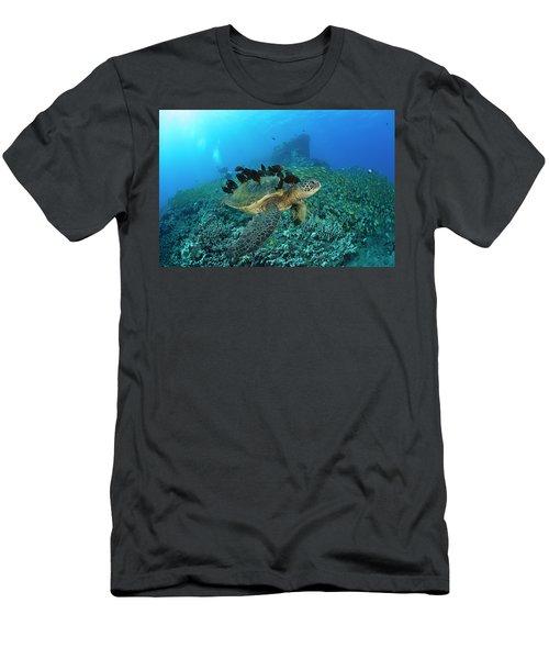A Green Sea Turtlec  Chelonia Mydas Men's T-Shirt (Athletic Fit)