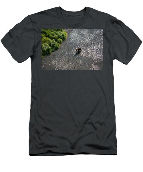 A Grizzly Bear Feasts On Sockeye Salmon Men's T-Shirt (Athletic Fit)