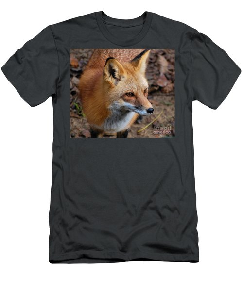 A Little Red Fox Men's T-Shirt (Athletic Fit)