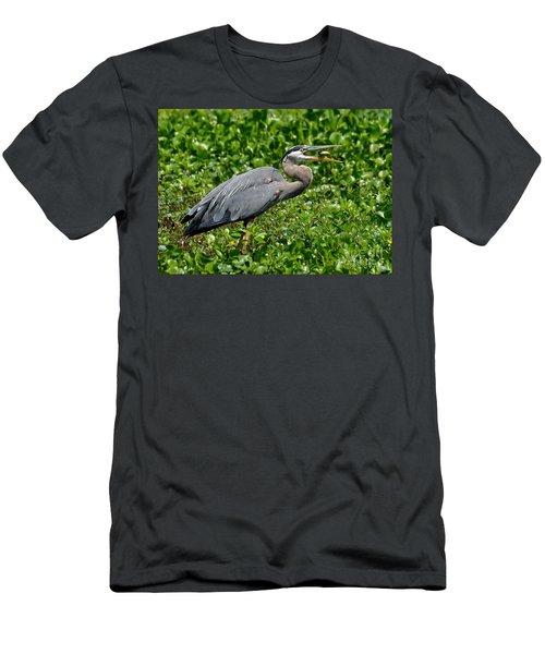 A Little Snack Men's T-Shirt (Athletic Fit)