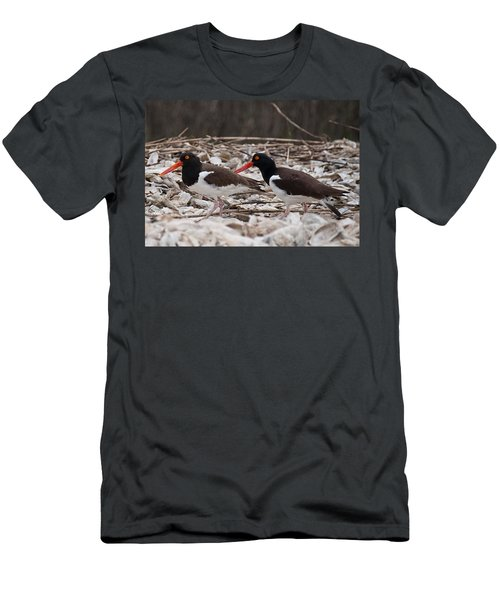 A Mated Pair Of Oyster Catchers Men's T-Shirt (Slim Fit) by John Black