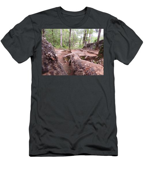 A New View From The Woods Men's T-Shirt (Slim Fit) by Aaron Martens