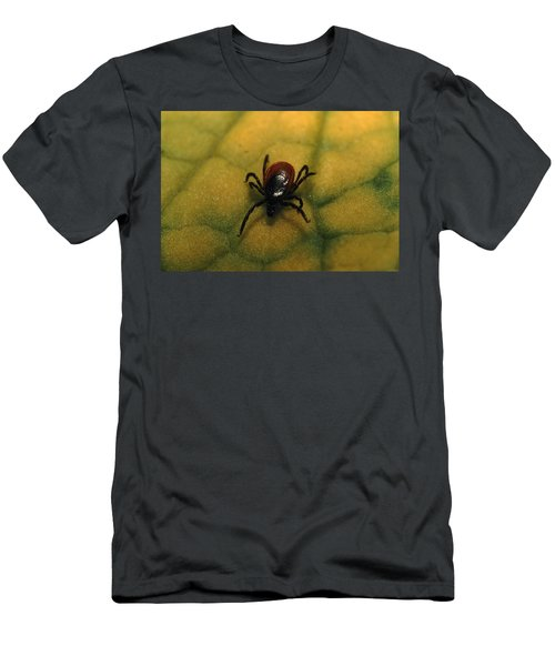 A Tick Found In The Southern Siberian Men's T-Shirt (Athletic Fit)