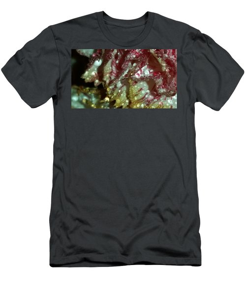 Abstract Carnation Men's T-Shirt (Athletic Fit)