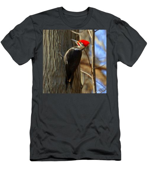 Adult Male Pileated Woodpecker Men's T-Shirt (Athletic Fit)