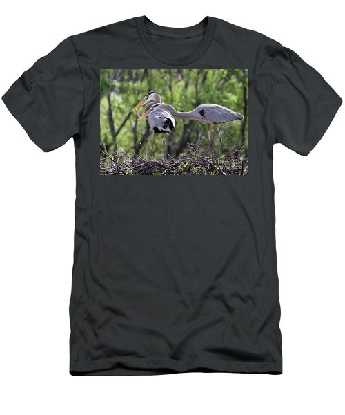 Affectionate Great Blue Heron Mates Men's T-Shirt (Athletic Fit)