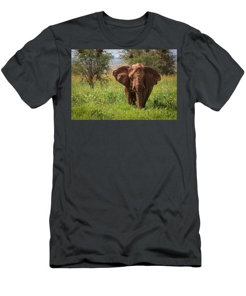 African Desert Elephant Men's T-Shirt (Athletic Fit)