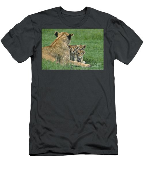 African Lion Cubs Study The Photographer Tanzania Men's T-Shirt (Athletic Fit)