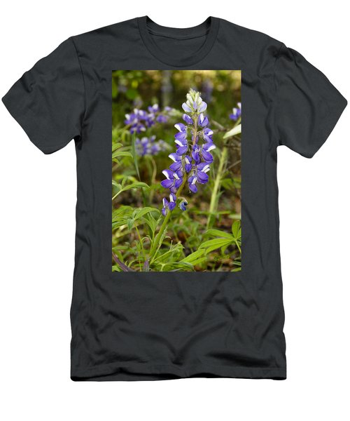 Alaskan Lupine In Denali Park Men's T-Shirt (Athletic Fit)