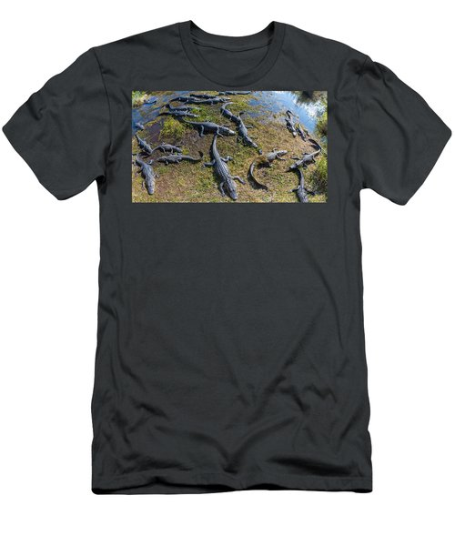 Alligators Along The Anhinga Trail Men's T-Shirt (Athletic Fit)