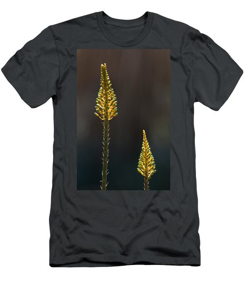 Aloe Plant Men's T-Shirt (Athletic Fit)