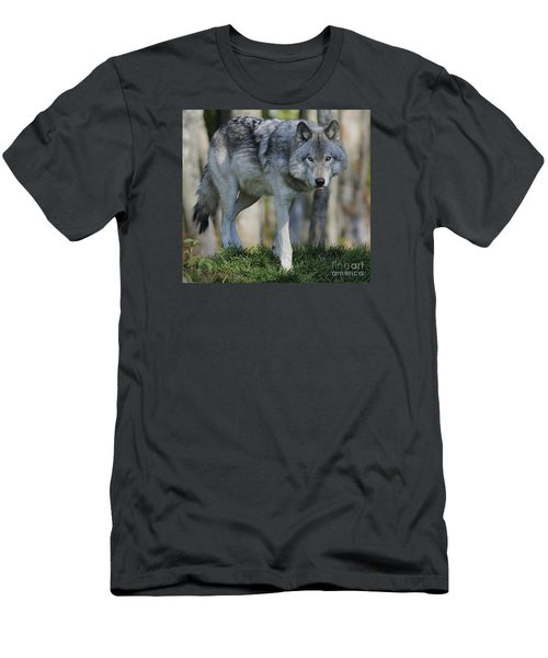 Alpha... Men's T-Shirt (Slim Fit) by Nina Stavlund