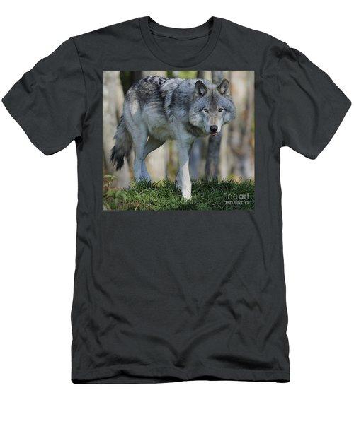 Alpha... Men's T-Shirt (Athletic Fit)