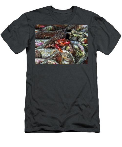 Am I Red? Men's T-Shirt (Athletic Fit)