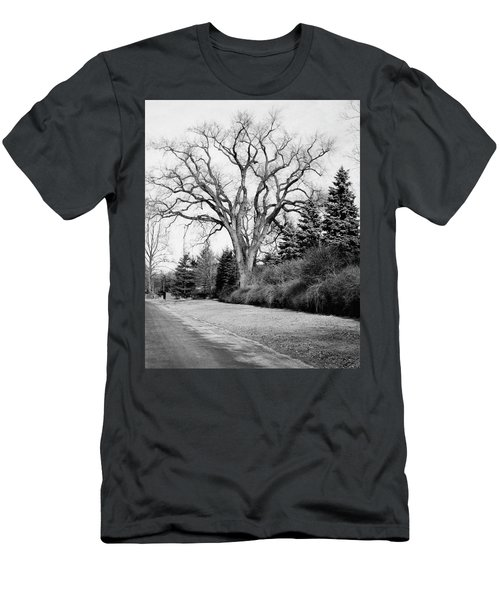 An Elm Tree At The Side Of A Road Men's T-Shirt (Athletic Fit)