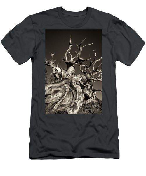 Ancient Bristlecone Pine In Black And White Men's T-Shirt (Athletic Fit)