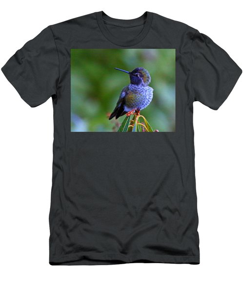Annas Hummingbird Men's T-Shirt (Athletic Fit)