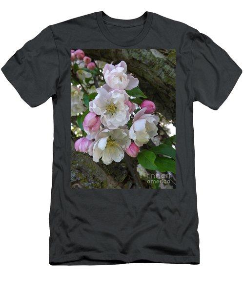 Apple Blossom Bouquet Men's T-Shirt (Athletic Fit)