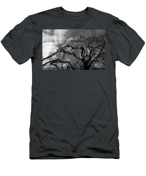 Apple Tree Bw Men's T-Shirt (Athletic Fit)