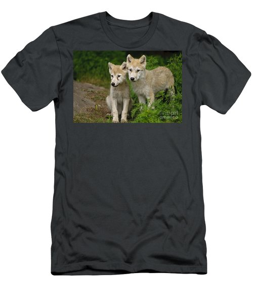 Arctic Wolf Puppies Men's T-Shirt (Athletic Fit)