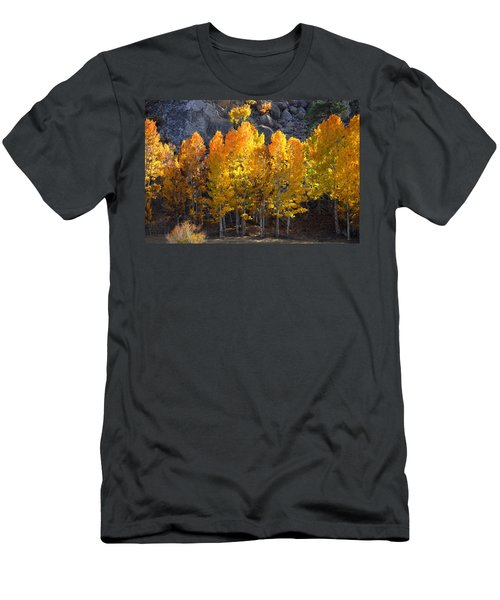 Aspen Gold Men's T-Shirt (Slim Fit) by Lynn Bauer