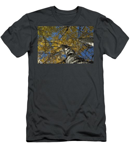 Fall Aspen Men's T-Shirt (Athletic Fit)