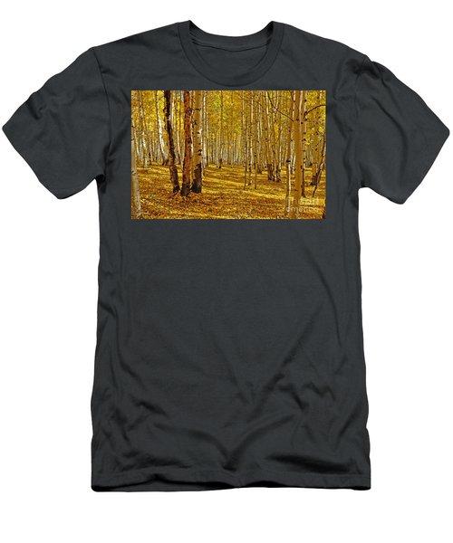 Aspen Sanctuary Men's T-Shirt (Athletic Fit)