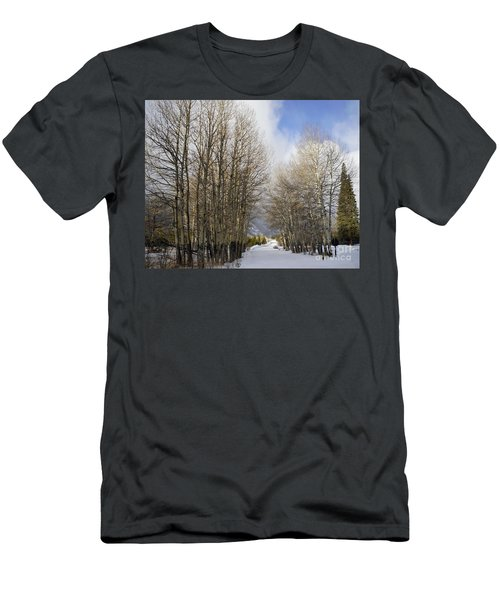 Aspen Trees Along Snowy Colorado Path Men's T-Shirt (Slim Fit)