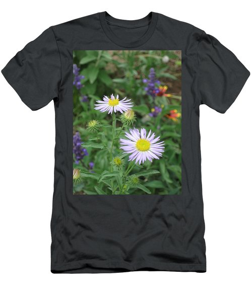 Asters In Close-up Men's T-Shirt (Athletic Fit)