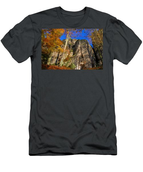 Autumn Colors In The Saxon Switzerland Men's T-Shirt (Athletic Fit)