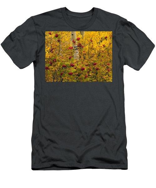 Autumn Forest Colors Men's T-Shirt (Athletic Fit)