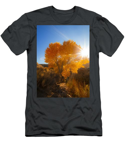 Autumn Golden Birch Tree In The Sun Fine Art Photograph Print Men's T-Shirt (Athletic Fit)
