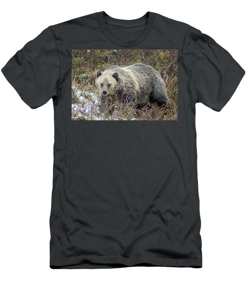 Men's T-Shirt (Slim Fit) featuring the photograph Autumn Grizzly by Jack Bell