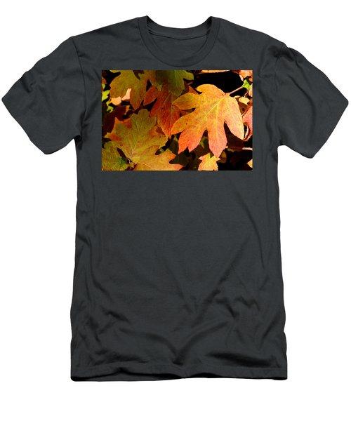 Autumn Hues Men's T-Shirt (Athletic Fit)
