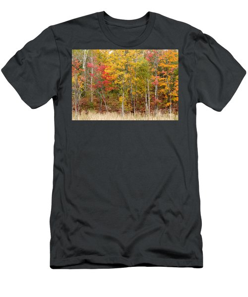 Autumn In Muskoka Men's T-Shirt (Athletic Fit)