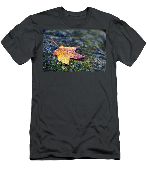 Autumn Leaf On Rocky Ledge Men's T-Shirt (Athletic Fit)