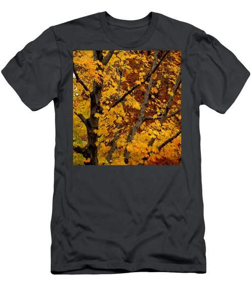 Autumn Moods 21 Men's T-Shirt (Athletic Fit)