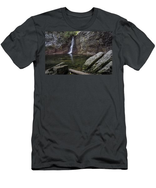 Autumn Swirls Men's T-Shirt (Slim Fit) by James Dean