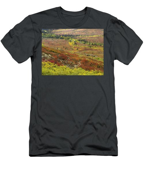 Autumn Tundra With Boreal Forest Men's T-Shirt (Athletic Fit)