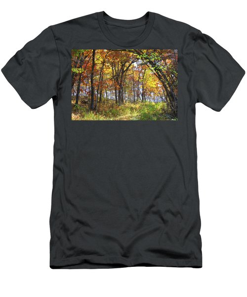 Autumn Woods Men's T-Shirt (Athletic Fit)