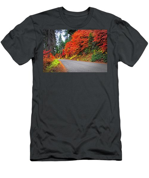 Autumn's Glory Men's T-Shirt (Slim Fit) by Lynn Bauer