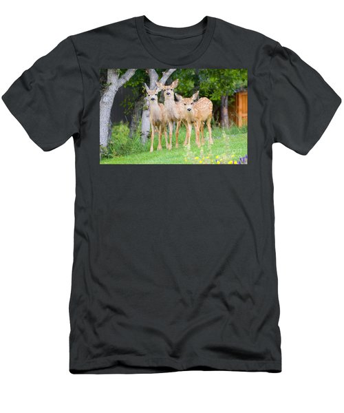 Baby Deer Men's T-Shirt (Athletic Fit)