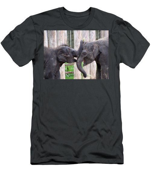 Baby Elephants - Bowie And Belle Men's T-Shirt (Athletic Fit)