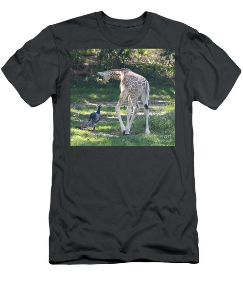 Baby Giraffe And Peacock Out For A Walk Men's T-Shirt (Slim Fit) by John Telfer