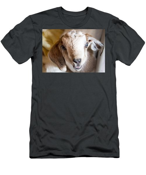 Baby Goat Face Men's T-Shirt (Athletic Fit)