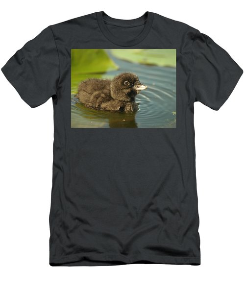 Baby Loon Men's T-Shirt (Athletic Fit)