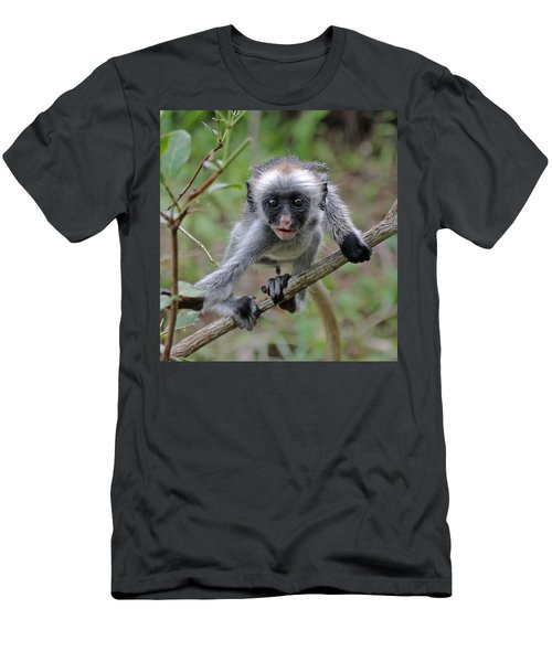 Baby Red Colobus Monkey Men's T-Shirt (Athletic Fit)