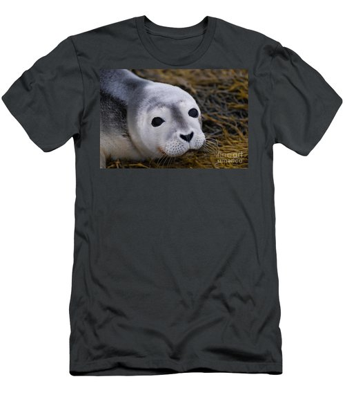 Baby Seal Men's T-Shirt (Slim Fit) by DejaVu Designs